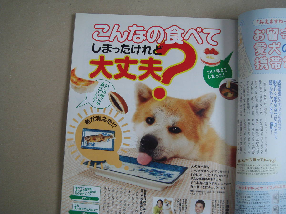 ★ いぬのきもち 2008年 1月号 vol.68 タカ 91-2 _画像3