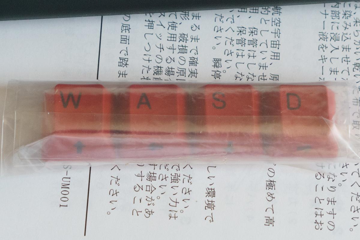 東プレ REALFORCE 91UG-S NG31BS (all30g 静音 日本語配列 テンキーレス かな無 昇華印刷)_画像3