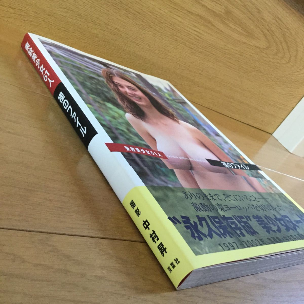 廃盤稀少品 ヘアヌード写真集 「東欧美少女61人 裸のファイル」 全158ページ オールカラー 美中古 中村昇氏撮影_画像6