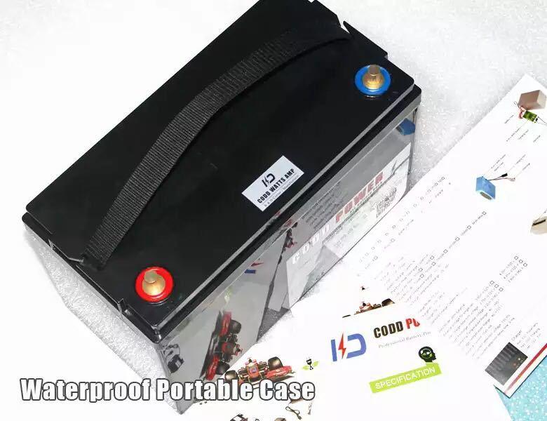 24V60Ahリチウムイオンバッテリー エレクトリックモーター電源_画像3