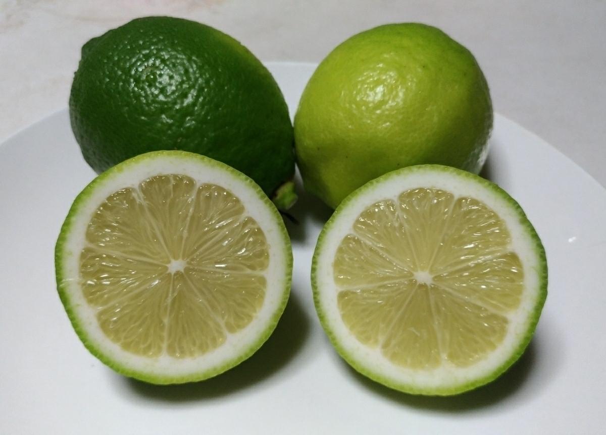 広島県産無農薬グリーンレモン2kg_画像3