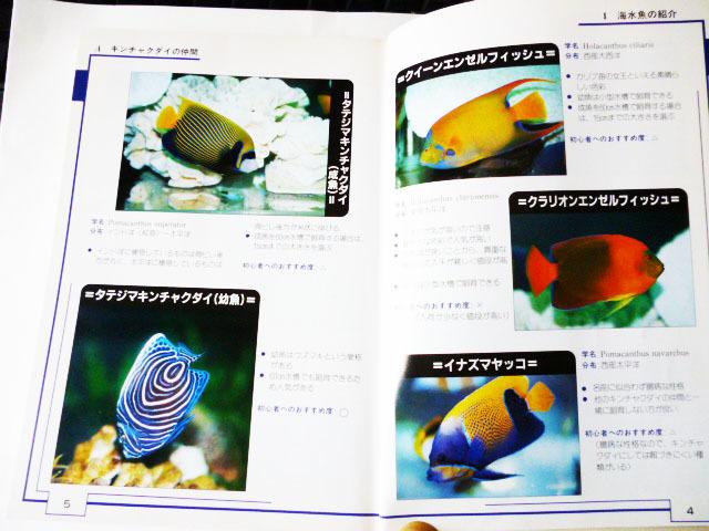 海水魚を飼う人のため!参考書 (池田書店)_画像2