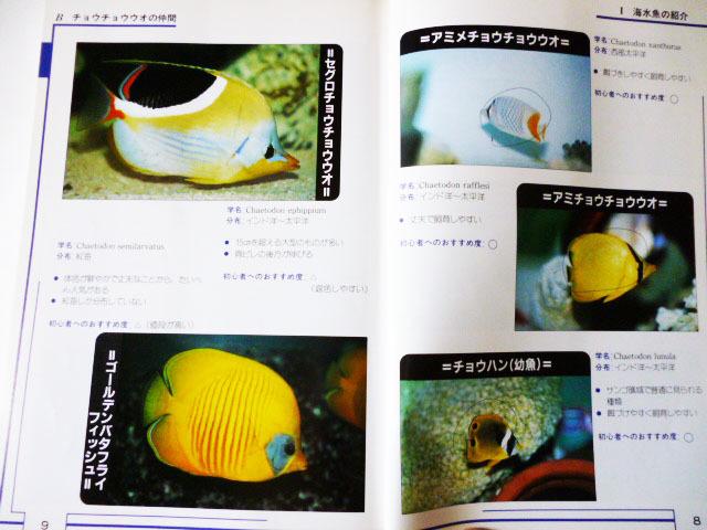 海水魚を飼う人のため!参考書 (池田書店)_画像3