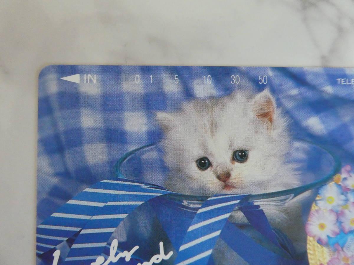新品・未使用★☆ テレホンカード ★ ラブリーfrenndo★ 子猫★☆50度_画像2
