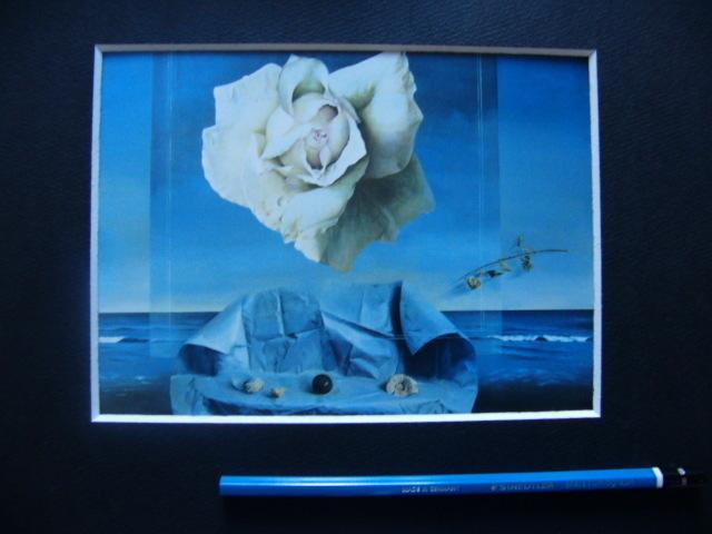 塩崎敬子【白いバラ、薔薇】希少画集画、状態良好、新品高級額装付、送料無料、洋画 油彩 風景、zero_画像5