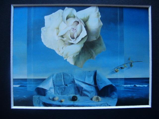 塩崎敬子【白いバラ、薔薇】希少画集画、状態良好、新品高級額装付、送料無料、洋画 油彩 風景、zero_画像4