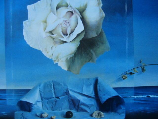 塩崎敬子【白いバラ、薔薇】希少画集画、状態良好、新品高級額装付、送料無料、洋画 油彩 風景、zero_画像1