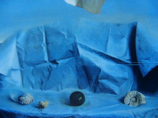 塩崎敬子【白いバラ、薔薇】希少画集画、状態良好、新品高級額装付、送料無料、洋画 油彩 風景、zero_画像2