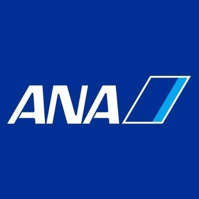 全日空 ANA300000マイル _画像3