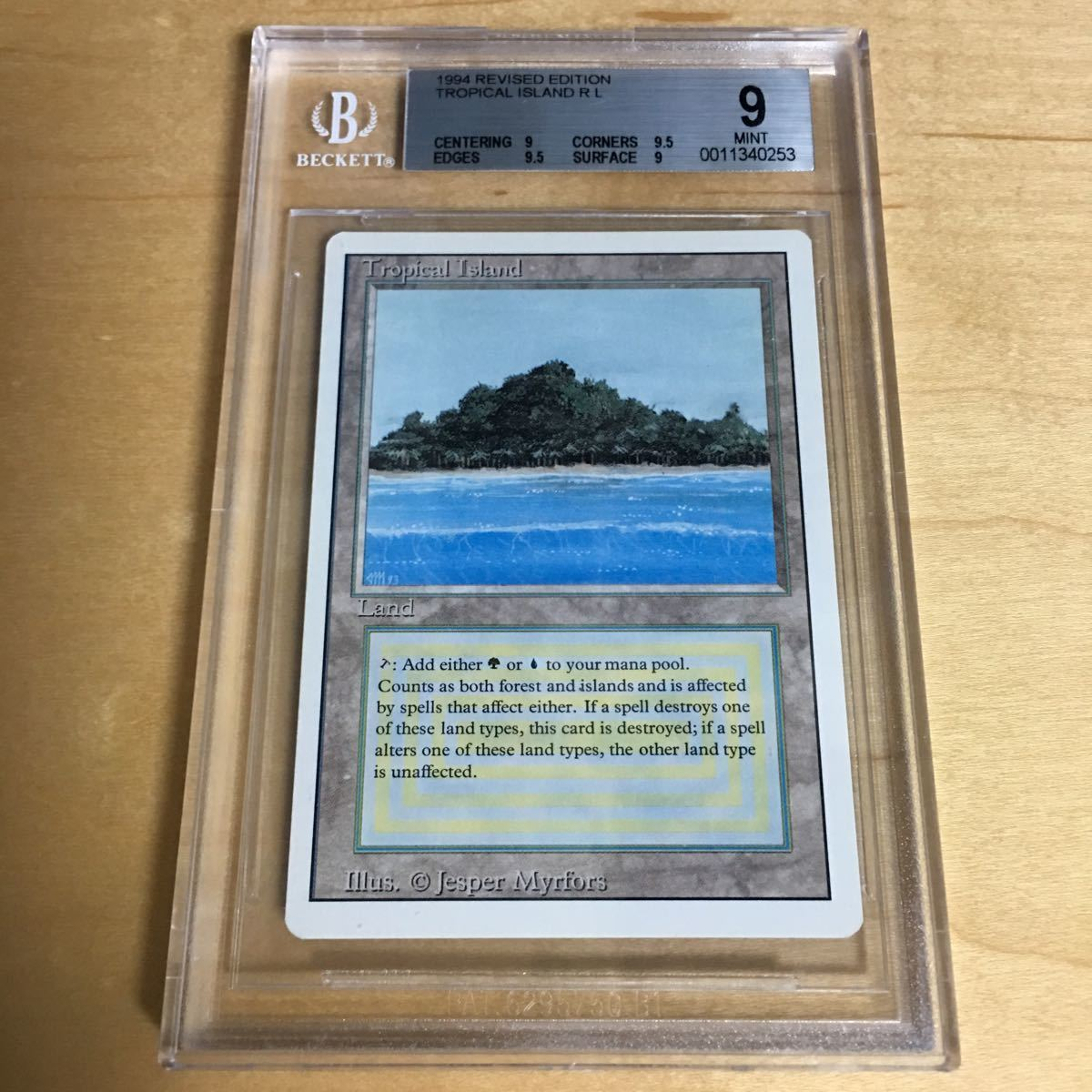 Tropical Island Revised BGS9