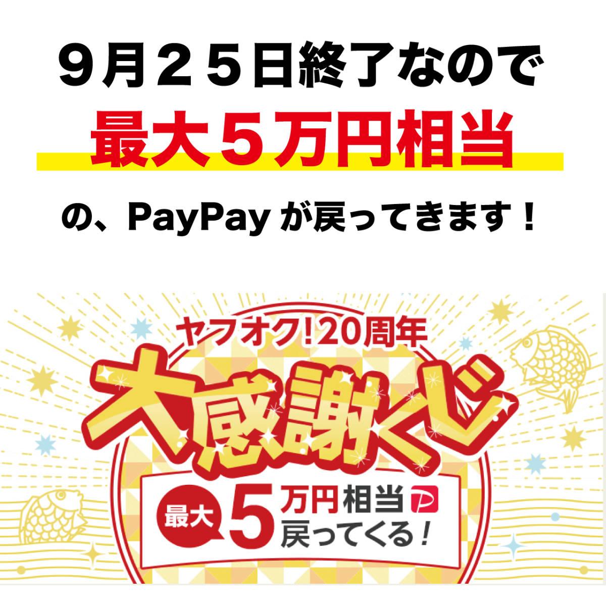 【限定1個】高勝率バイナリーサインツール 1円スタート!5のつく日と大感謝くじで超お得に購入可能!_画像3