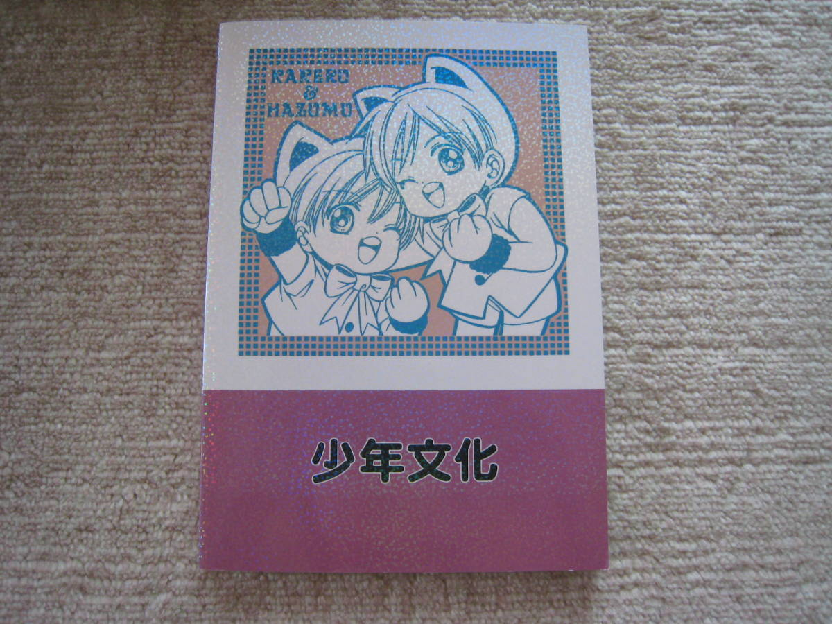 少年文化/大和名瀬同人誌『むかしむかし』再録本