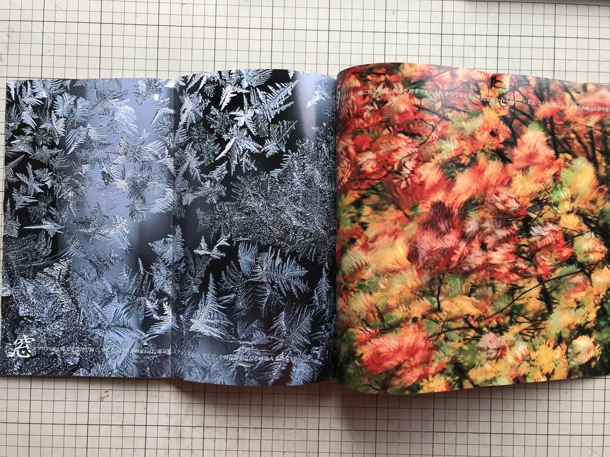 『NATIONAL GEOGRAPHIC 日本版 1998年7~12月号6冊セット』自然災害の恐怖・火星・王家の谷・世界の人口・ハワイの怪物波・寄生虫 他 04872_画像6