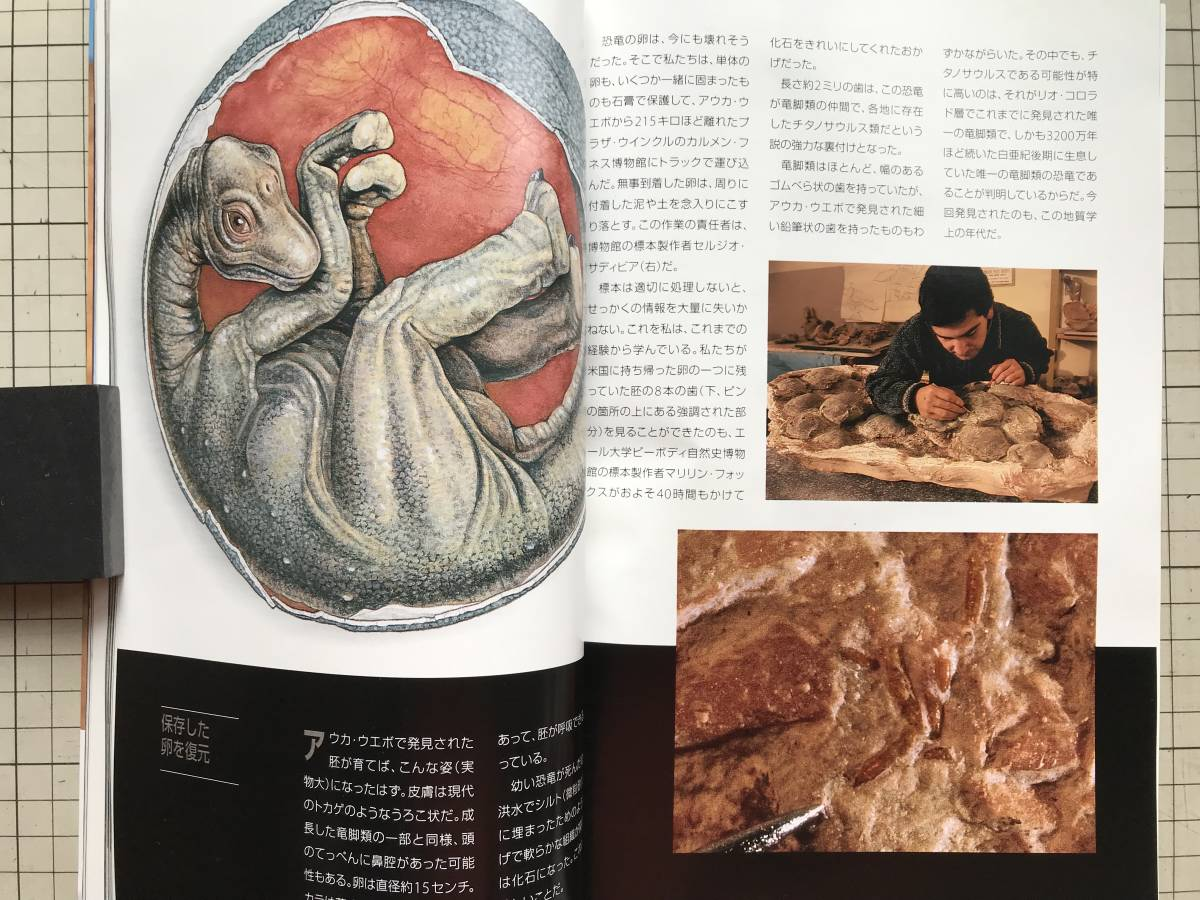 『NATIONAL GEOGRAPHIC 日本版 1998年7~12月号6冊セット』自然災害の恐怖・火星・王家の谷・世界の人口・ハワイの怪物波・寄生虫 他 04872_画像9