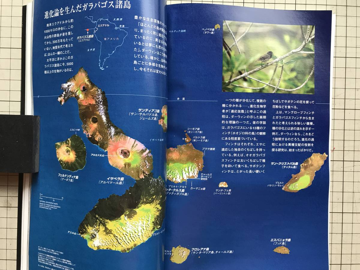 『NATIONAL GEOGRAPHIC 日本版 1999年1~6月号6冊セット』サンゴ礁・生物多様性・エルニーニョ・リカオン・ミッドウェー海戦 他 04873_画像8