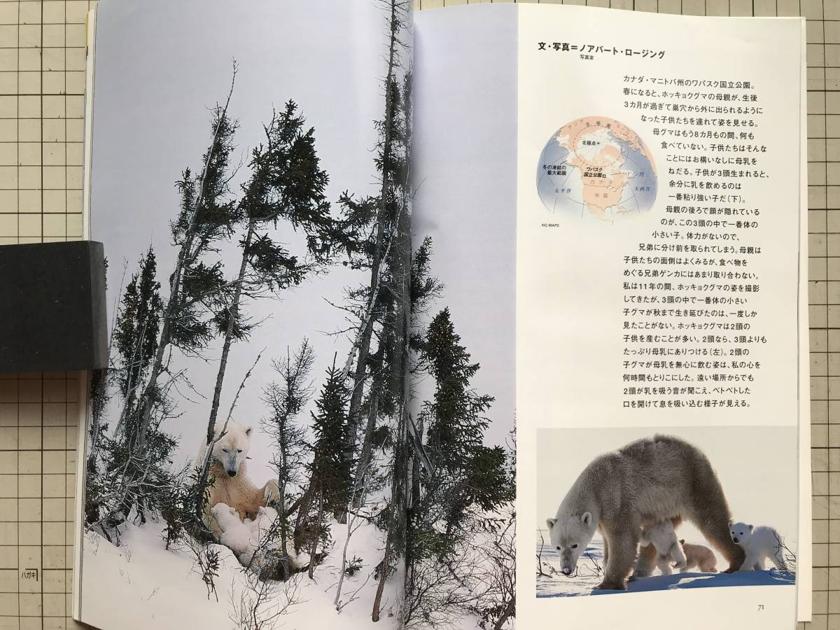 『NATIONAL GEOGRAPHIC 日本版 2000年7~12月号6冊セット』米領サモア・シドニー・ラナ・タルー・ボルネオ・リビア・青ナイル 他 04876_画像9
