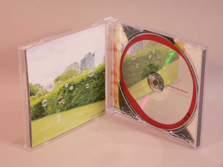 (CD) 坂本真綾 「Driving in the silence」 初回限定盤DVD付 / VTZL-33_画像5