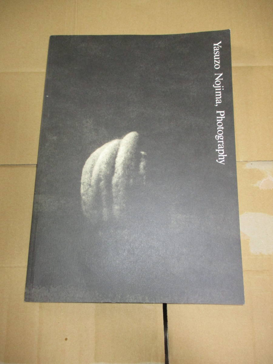 写真集 写真展 図録 野島康三 ピクトリアリスム ヌード など_画像1