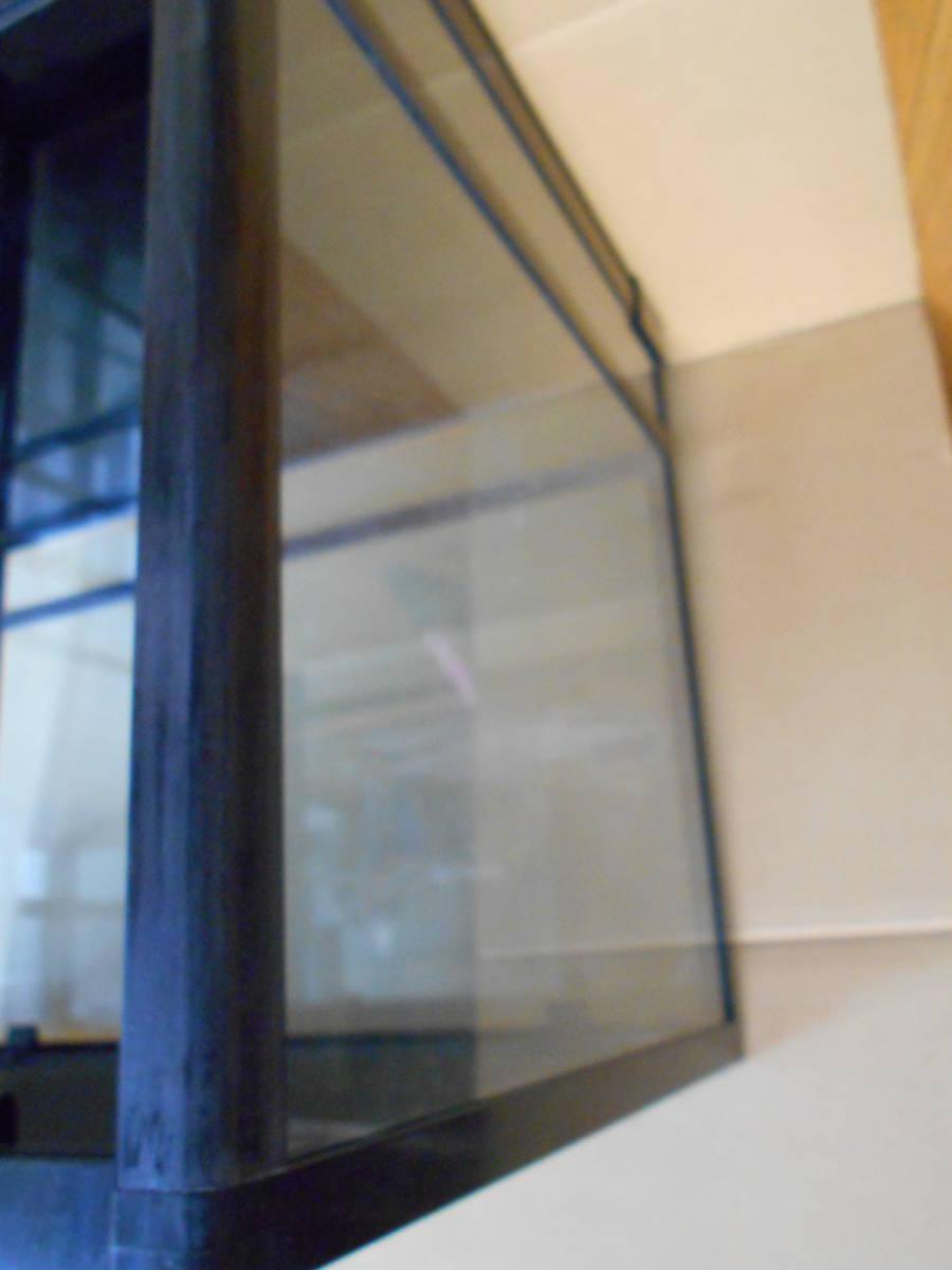 中古 三晃商会 パンテオンブラック BK6045 カエルトカゲヘビ爬虫類両生類 送料無料_画像6