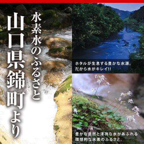 ◆即決最安値挑戦 水素たっぷりのおいしい水 高濃度水素水300mL×20本[ミネラルウォーター水](メロディアン いちおし)◆_画像4