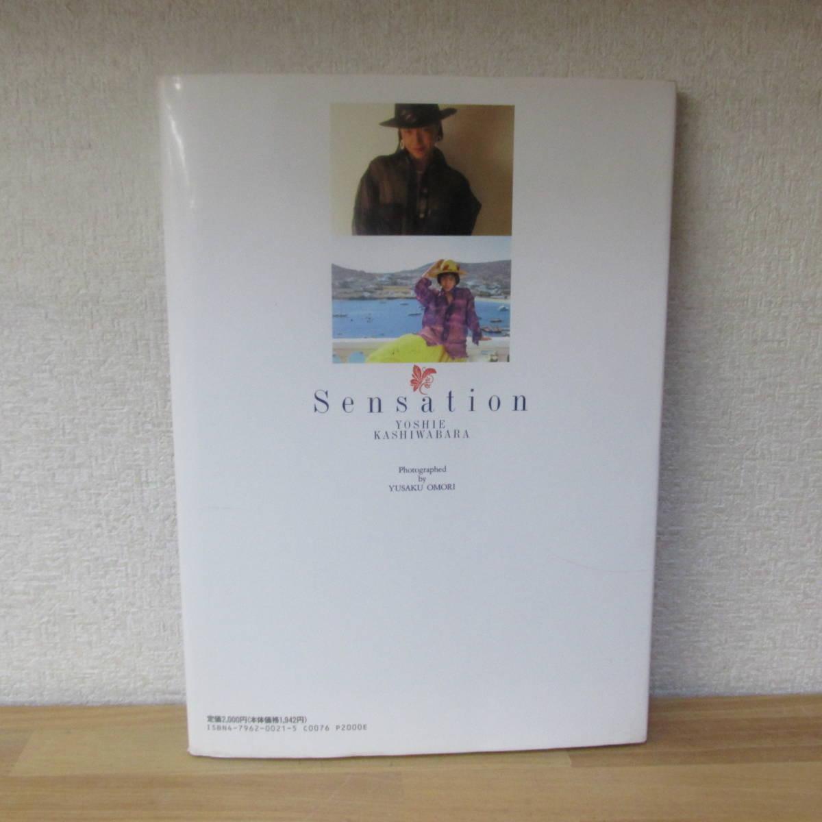 柏原芳恵 Sensation 写真集 センセーションスコラ_画像2