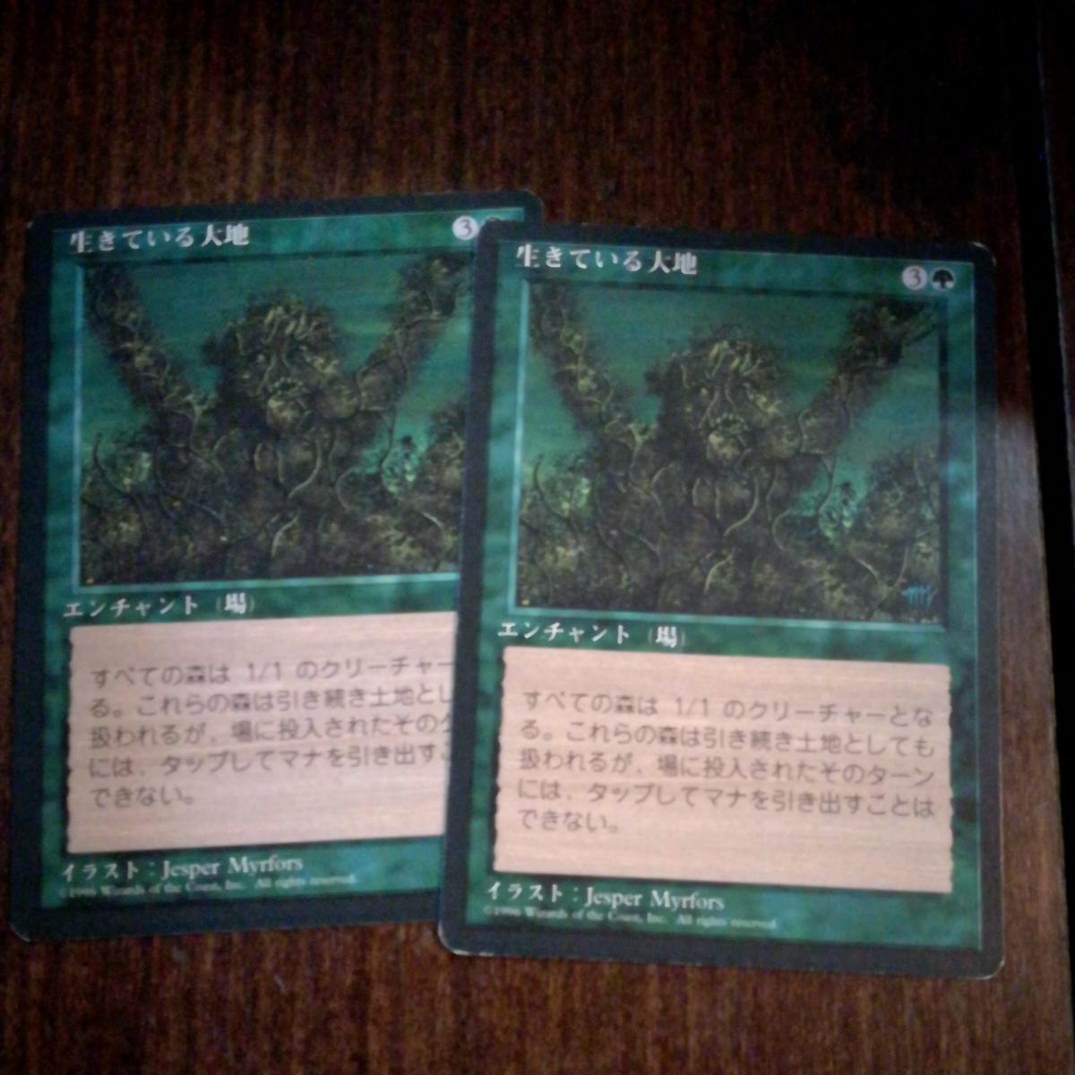 生きている大地 日本語2枚セット_画像1