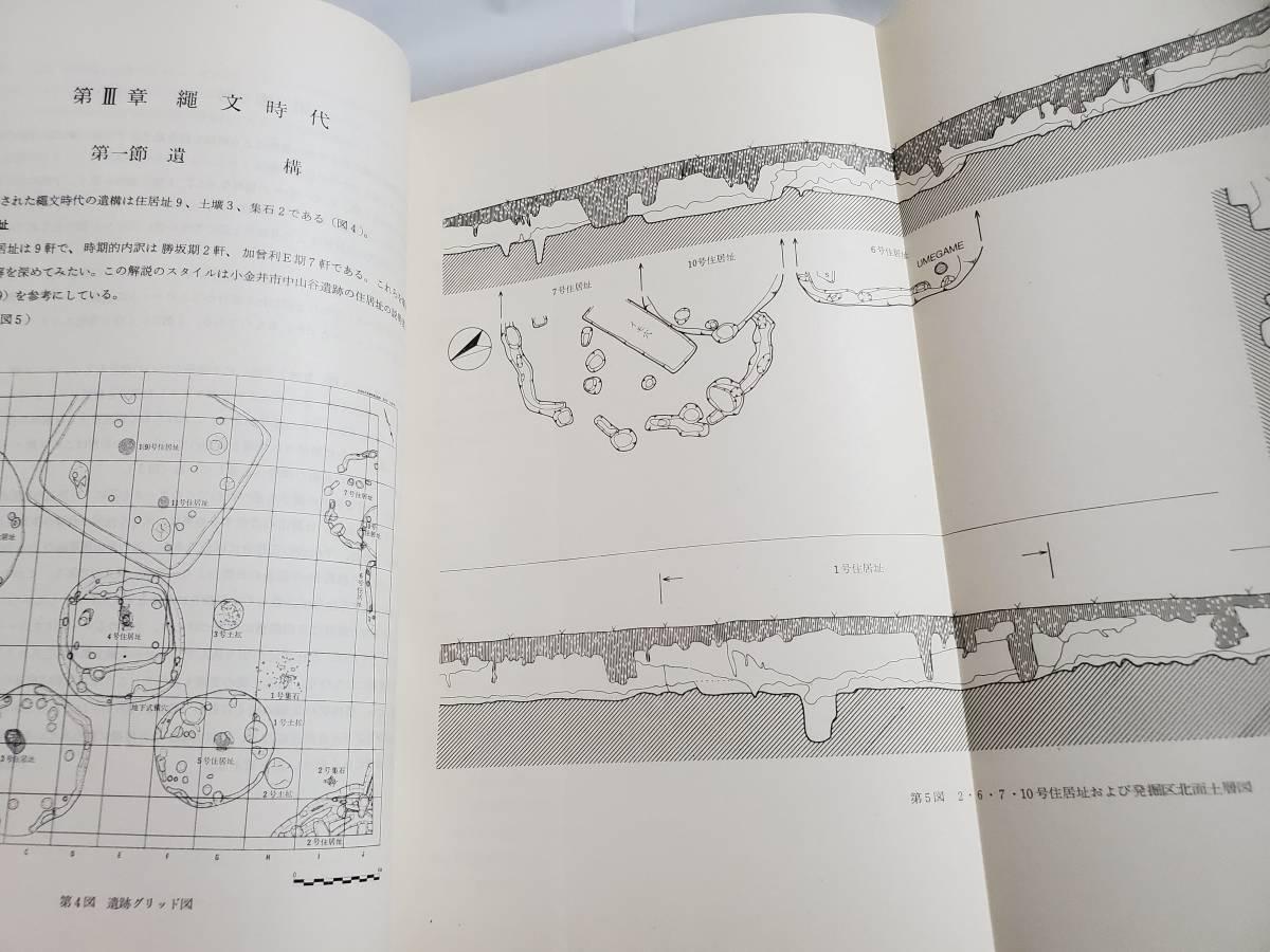 H21 平山橋遺跡 東京西線及び北八王子変電所遺跡調査会 1974年 日野市教育委員会 送料込 考古学 埋蔵文化財発掘調査報告書_画像10