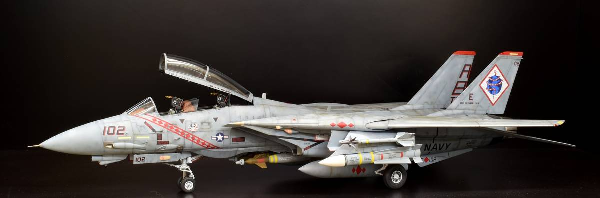 模型誌掲載作例 タミヤ1/32 F-14B 完成品_画像2