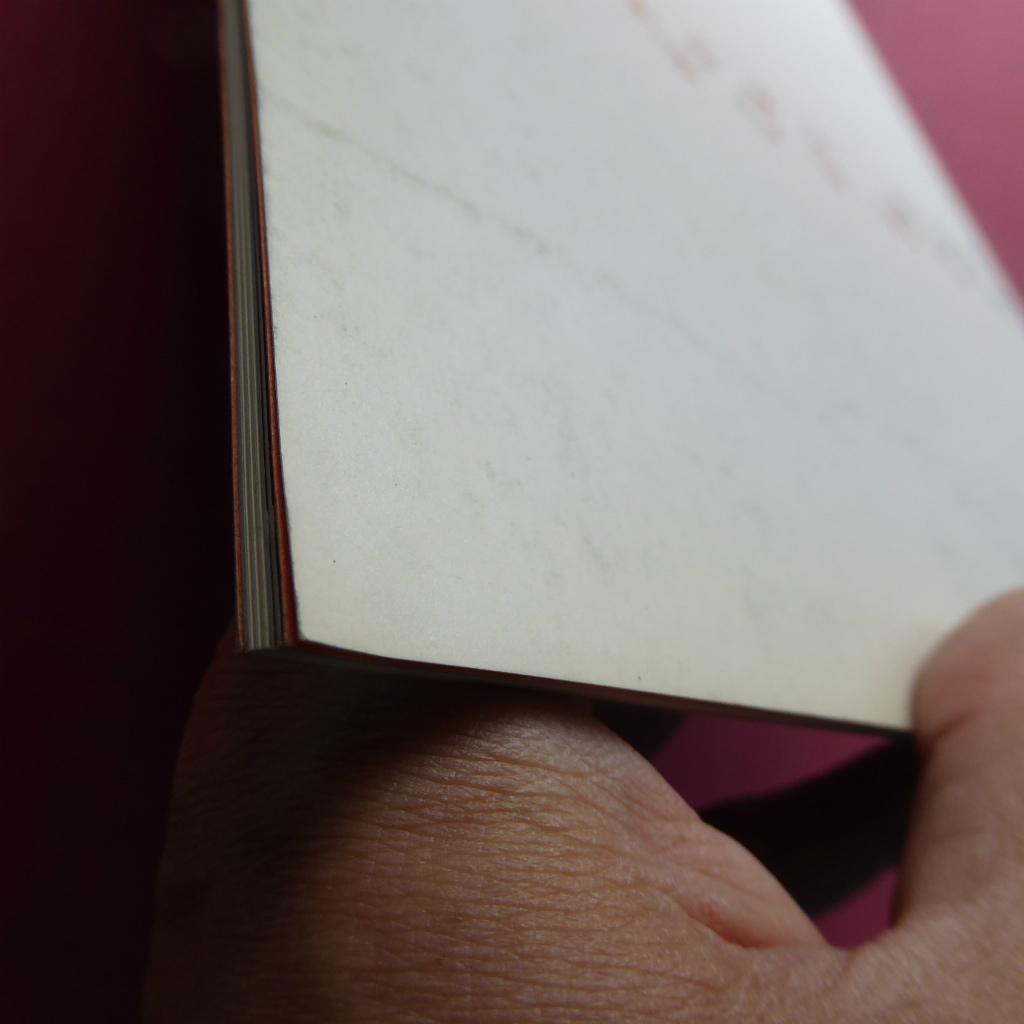 y2図録【レオ・カステリとニューヨーク・アートシーン/1983年】東野芳明:レオ・カステリの四半世紀/森口陽:レオ・カステリについて_画像3