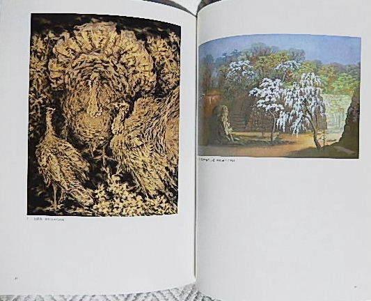 ☆図録 児玉希望 日本画と写生の世界 泉屋博古館 分館 2007☆_画像3