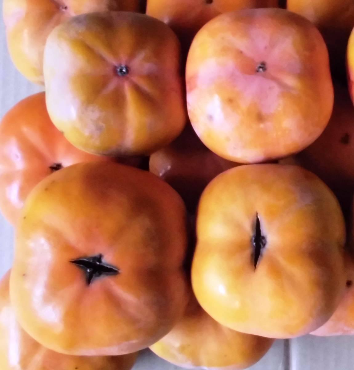 愛知県豊橋産今が旬の次郎柿10kg(家庭用)・・・ シャキシャキ食感が好き_画像4