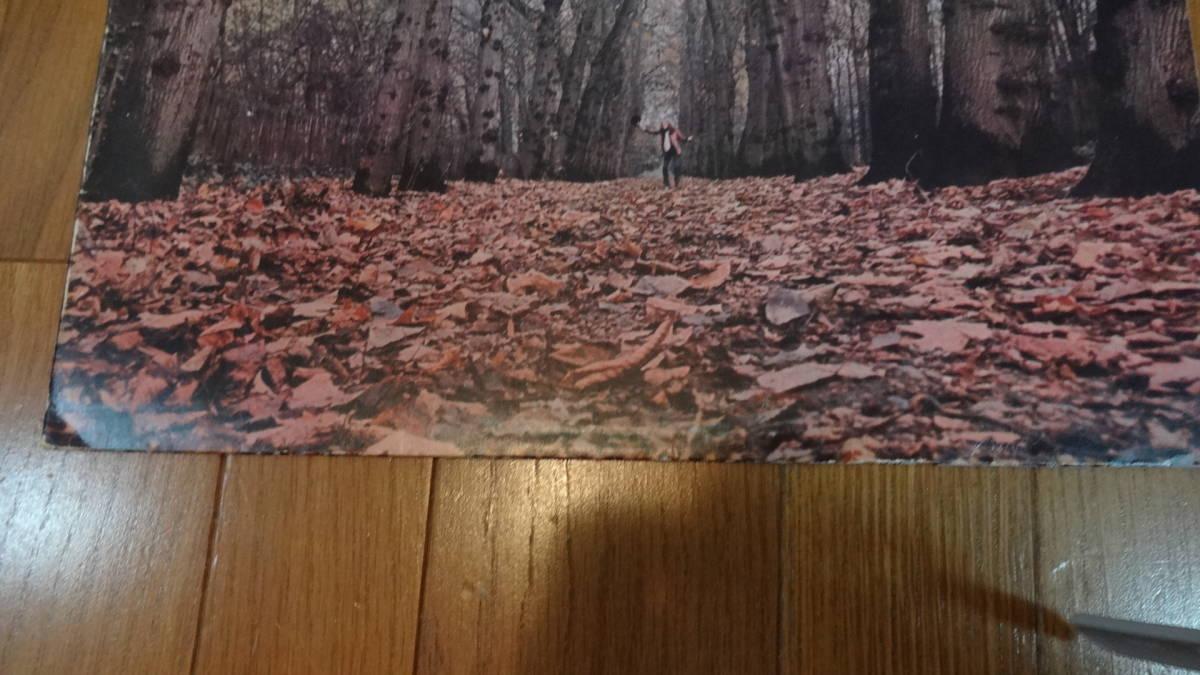 UKマト1盤レア盤LP・TWINK/THINK PINK_画像5