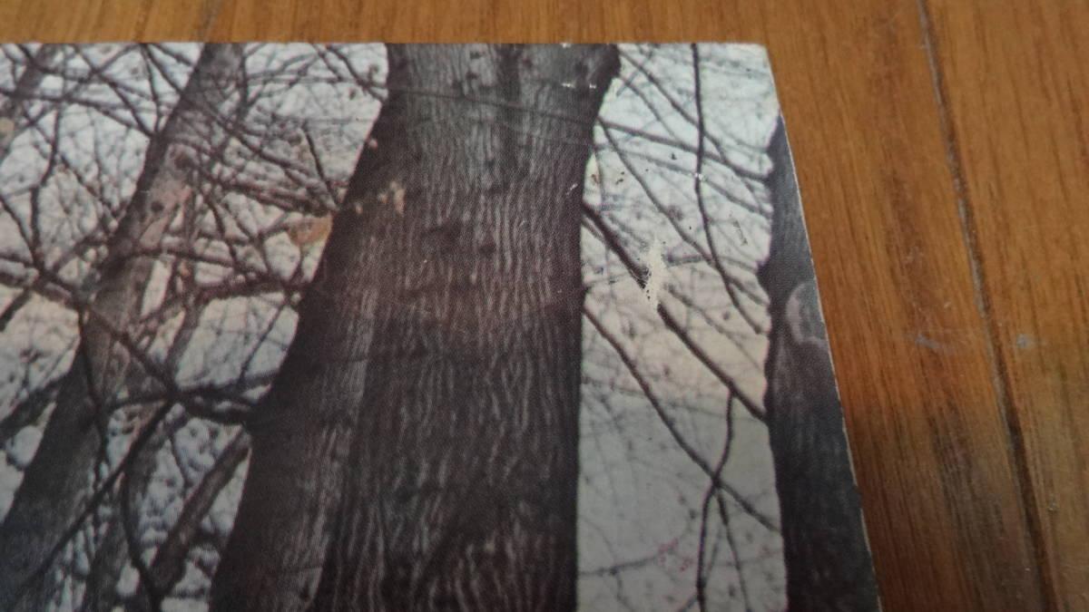 UKマト1盤レア盤LP・TWINK/THINK PINK_画像8