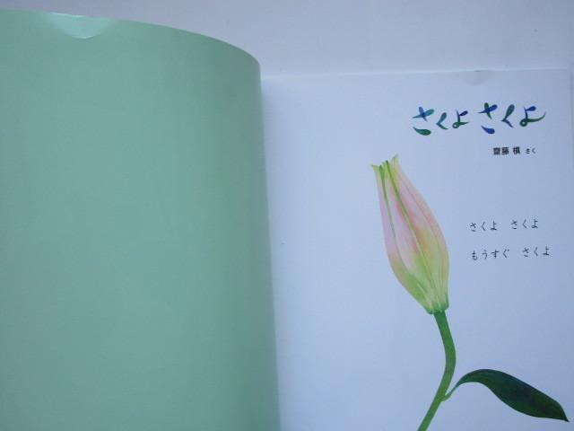 ちいさなかがくのとも 「さくよ さくよ (さくよさくよ)」 おりこみふろく付 (ソフトカバー) 齋藤槙 福音館書店
