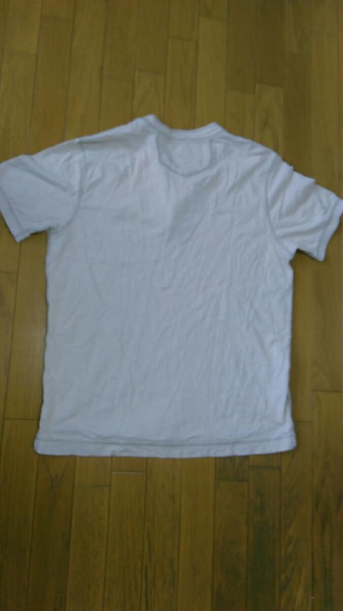 ===⇒最終値下げ![送料無料!]A403【Eddie Bauer】エディー・バウアー マウンテン Tシャツ Lサイズ 綿 コットン
