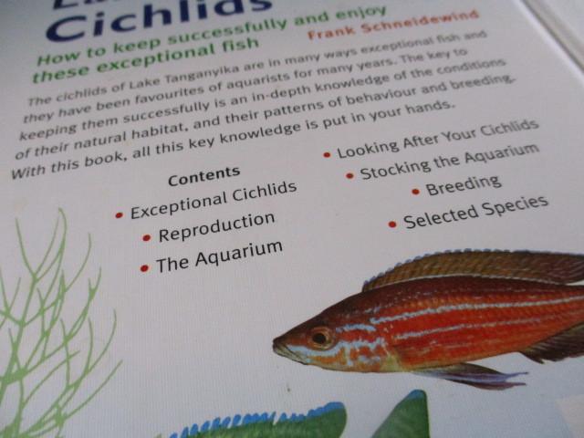 タンガニーカ湖のシクリッド図鑑 アフリカン・シクリッド 魚_画像4