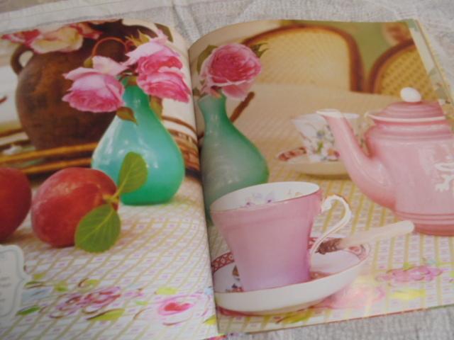 洋書The Painted Home ペイントされたインテリア 壁、家具 ファブリック アイデア インスピレーション デナ・フィシュバーン