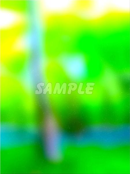 ●CG絵イラスト背景●完全オリジナル著作権フリー◆緑森林木◆幻想ファンタジー風印刷プリント高解像度画像素材集1,457点_画像4