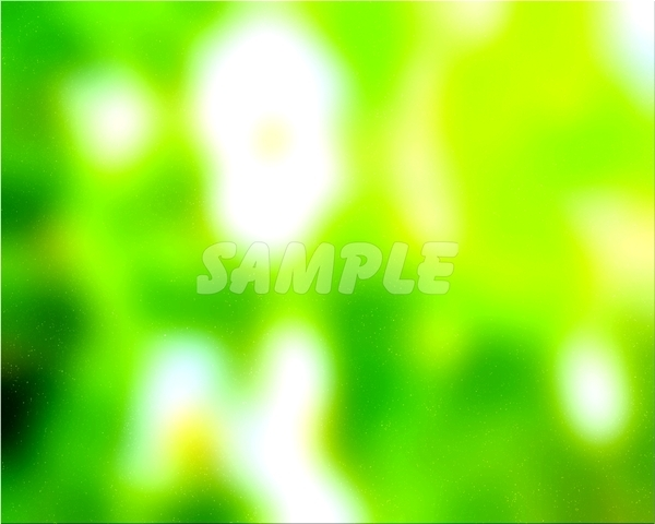 ● Desktop wallpaper 1024x768 ● Original copyright free ◆ Green forest ◆ CG image picture 1,457 items_画像5