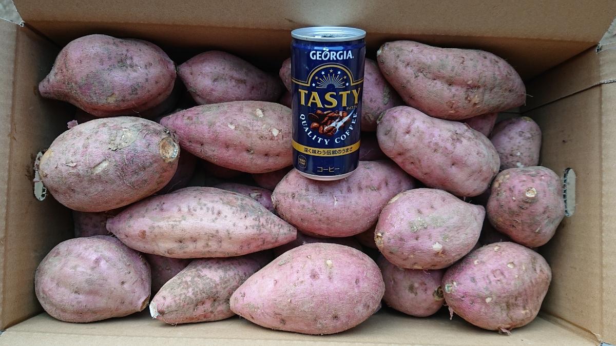 送料無料 L 10㎏ B品 種子島安納地区で作られた安納芋紅