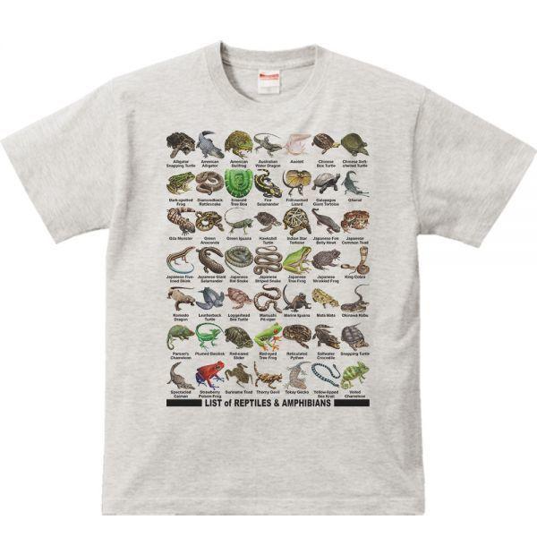 爬虫類&両生類のリスト/半袖Tシャツ/メンズM/杢_爬虫類&両生類/半袖Tシャツ/メンズM