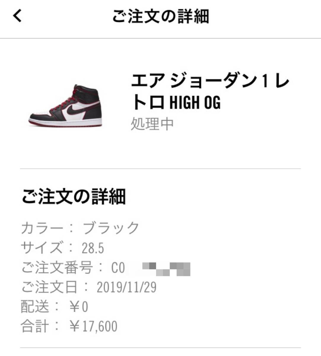 "28.5cm US10.5 NIKE AIR JORDAN 1 RETRO HIGH OG ""BLOODLINE"" WHO SAID MAN WAS NOT MEANT TO FLY ナイキエアジョーダン off-white dunk_画像3"