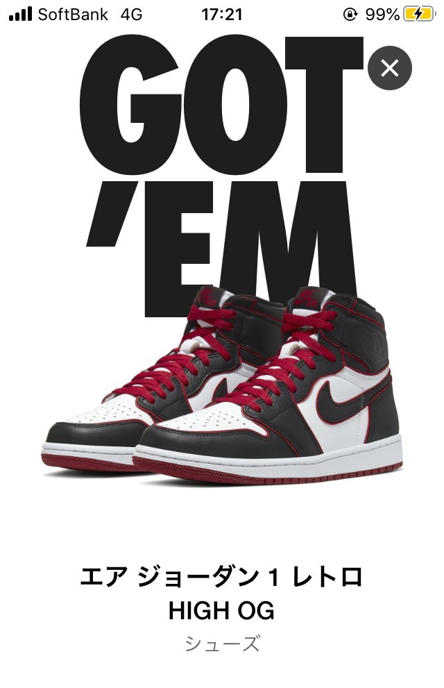"28.5cm US10.5 NIKE AIR JORDAN 1 RETRO HIGH OG ""BLOODLINE"" WHO SAID MAN WAS NOT MEANT TO FLY ナイキエアジョーダン off-white dunk_画像6"