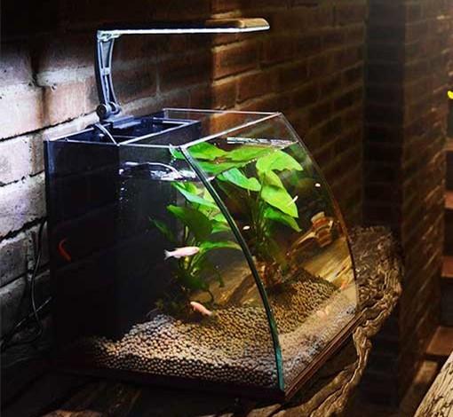 レイアウト ミニ家庭用 水族館 水槽 魚飼育 金魚の水槽セット 熱帯魚水槽セット LEDライト 水槽 ライト ペット用品 省電 静音