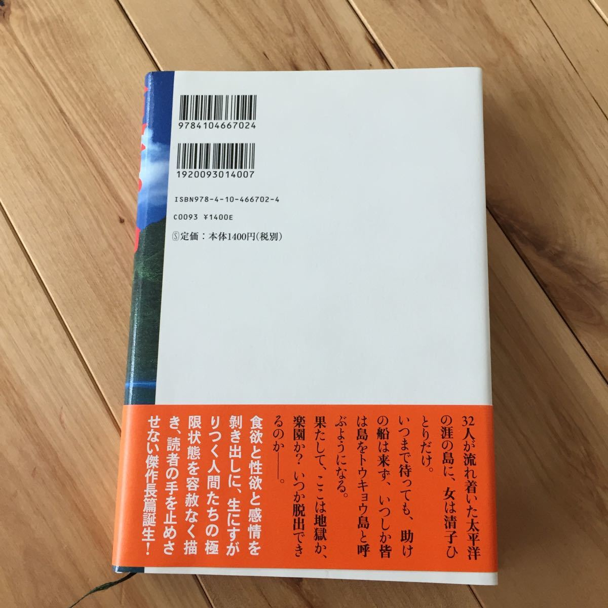 東京島/桐野夏生