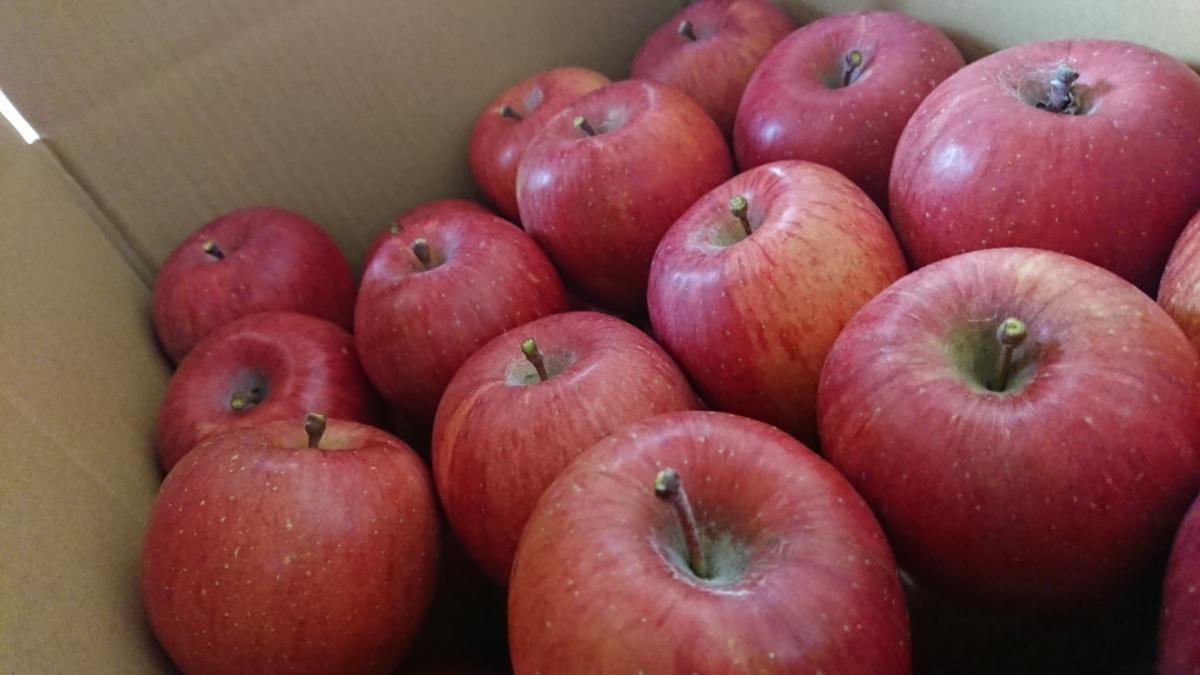 みずみずしく美味しい!【減農薬】サンふじ 【無肥料】たっぷり15キロ 信州りんご_画像4