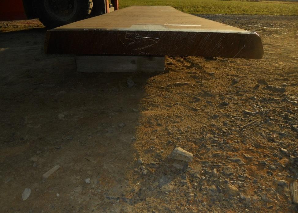 アフロモシア 特大長物 519cmX84~92cmX9cm 無垢一枚板 乾燥 ロングテーブル材料 カウンター 店舗 Bar 天板素材 アサメラ アフリカンチーク_画像3