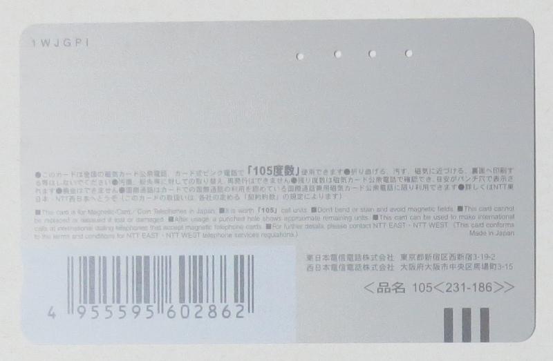 テレカ・使用済み・105度 イルカ 4孔、NTT発行 経年不明 擦り跡あり 送料63円・郵便書簡_裏面