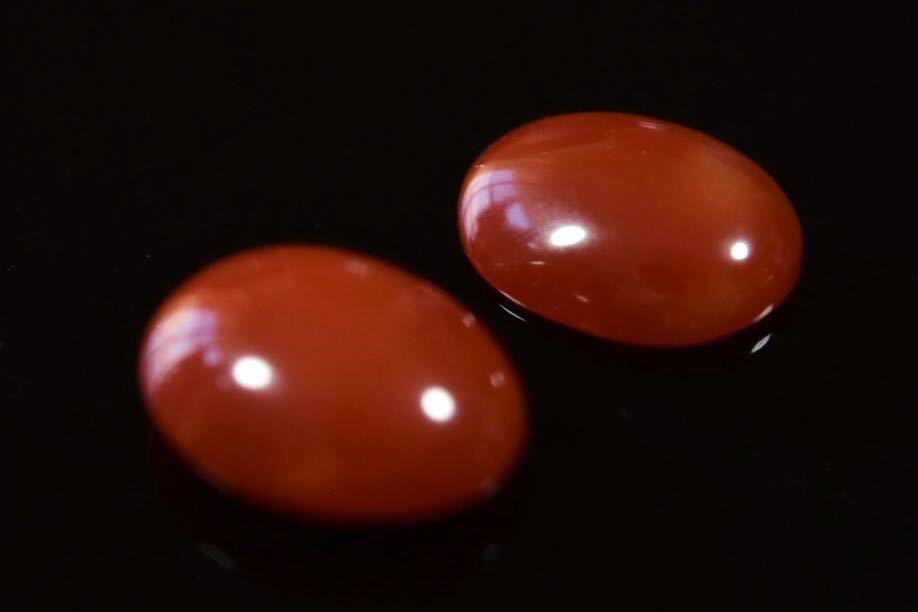 030/高知産血赤珊瑚保証 ルース 指輪アクセサリー用パーツ 2点纏めて 1.2g_画像2