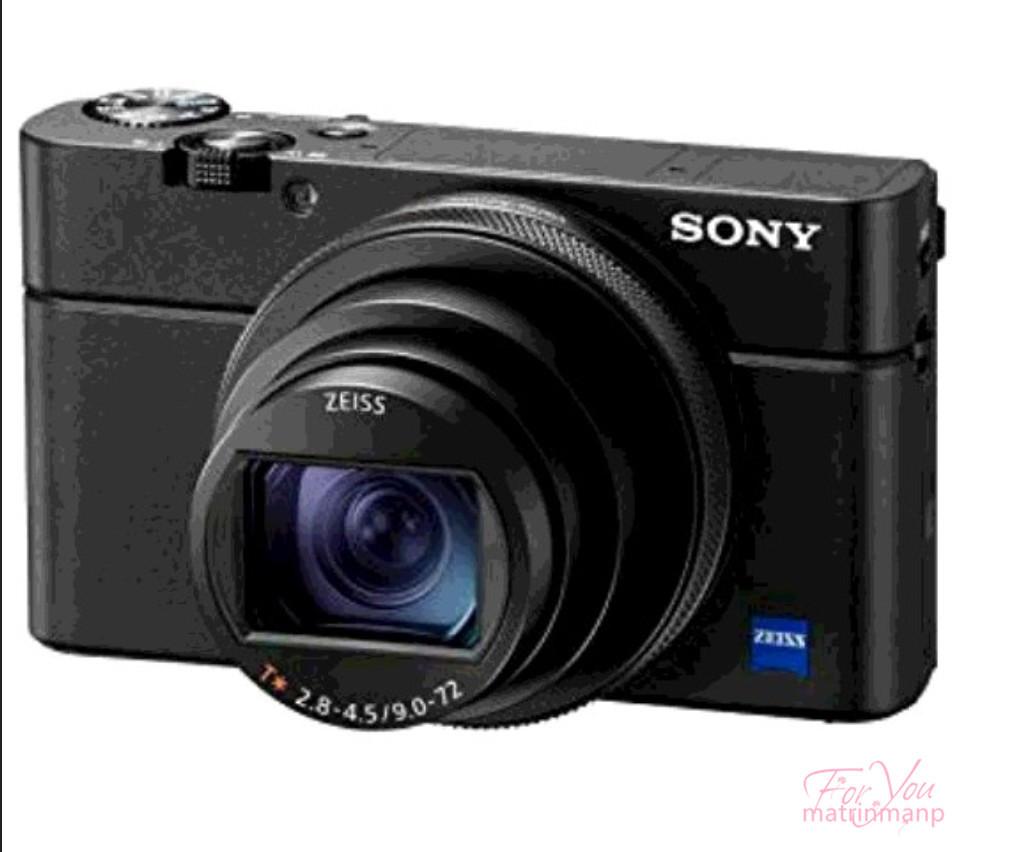 【正規品保証100%】ソニー SONY コンパクトデジタルカメラ サイバーショット Cyber-shot DSC-RX100M6